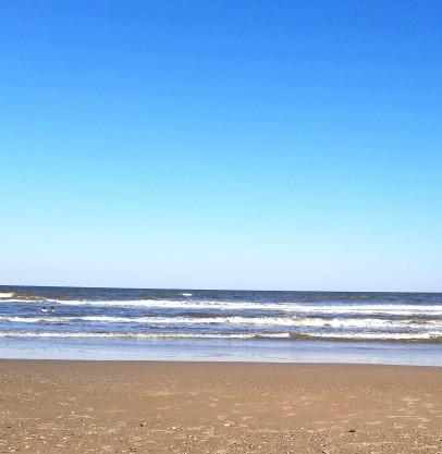 Matagorda Beach Texas with seashells.